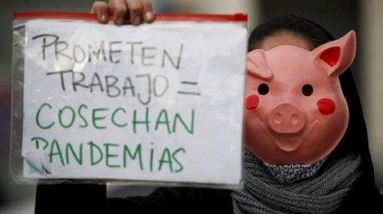 Marchemos contra el acuerdo porcino para que Argentina no sea cuna de nuevas pandemias