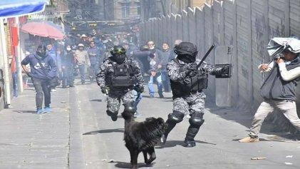Bolivia: claves para entender el conflicto de la Universidad Pública de El Alto