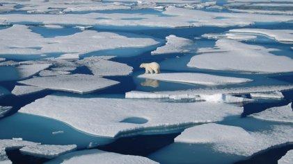 Groenlandia perdió un millón de toneladas de hielo por minuto durante 2019