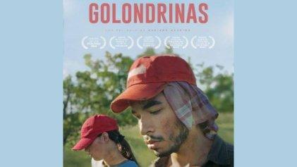 """""""Golondrinas"""": La precarización de los que viven migrando"""