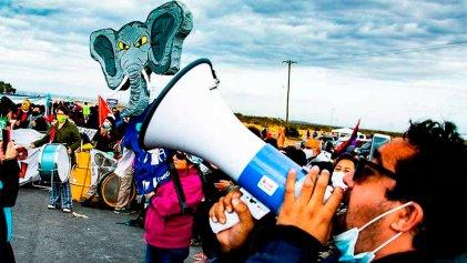Los elefantes de Neuquén: imágenes que muestran que sirve luchar