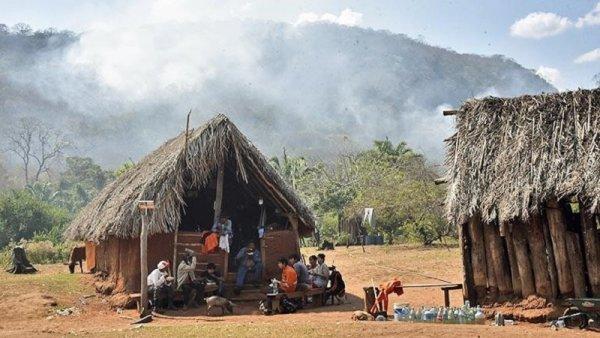 ¿Los responsables de los incendios en la Chiquitanía ahora van a reforestar?